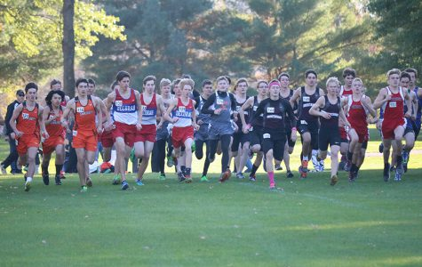 Cross Country Meets the End of Their Season