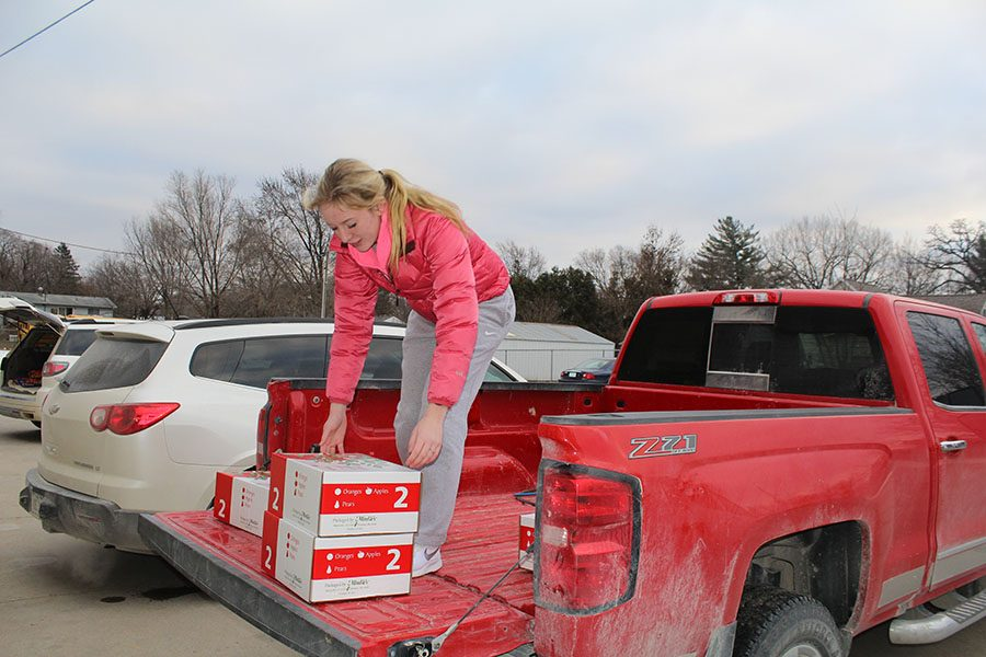 Loading+her+truck%2C+Macy+Loecke+%2811%29+prepares+to+deliver+the+fruit+she+sold+for+the+FFA+fruit+fundraiser.