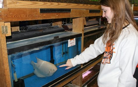 Aquaculture Students Purchase and Raise Fish