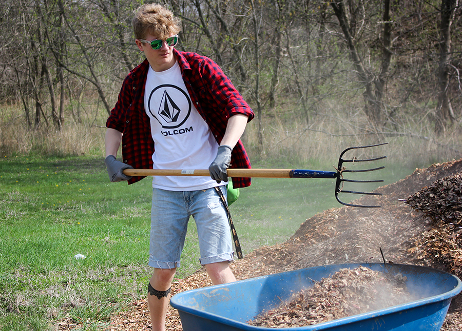 Senior Ben Litterer moves mulch into a wheel barrel for easy transport.