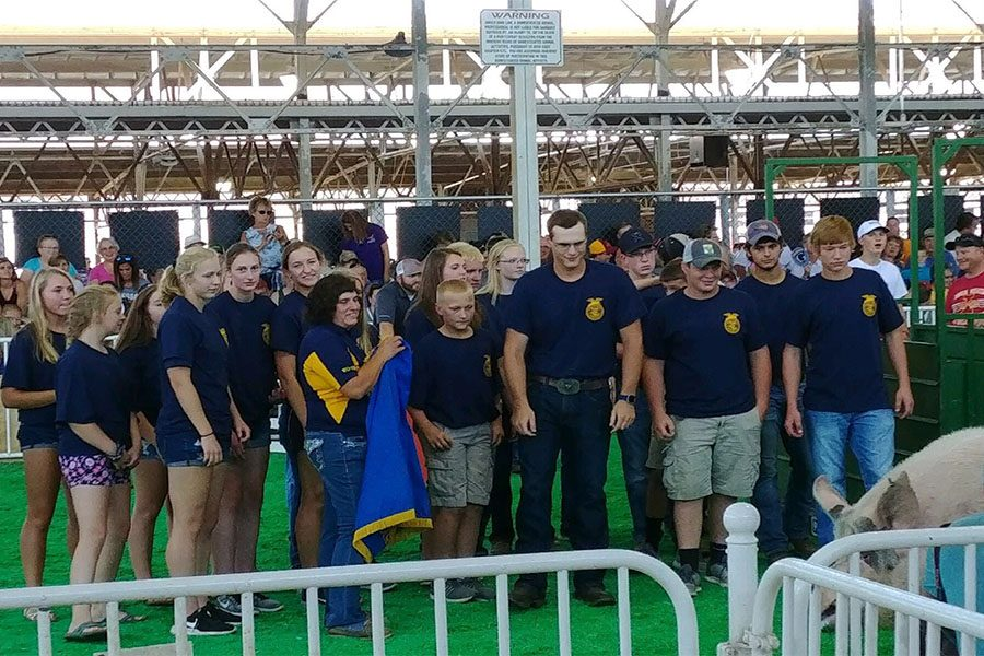 FFA+members+watch+as+Itty+Bitty+walks+around+the+show+ring+at+the+State+Fair.+